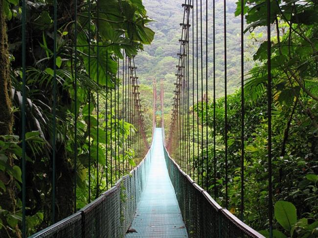 Costa Rica Free Pass - Enero 2015