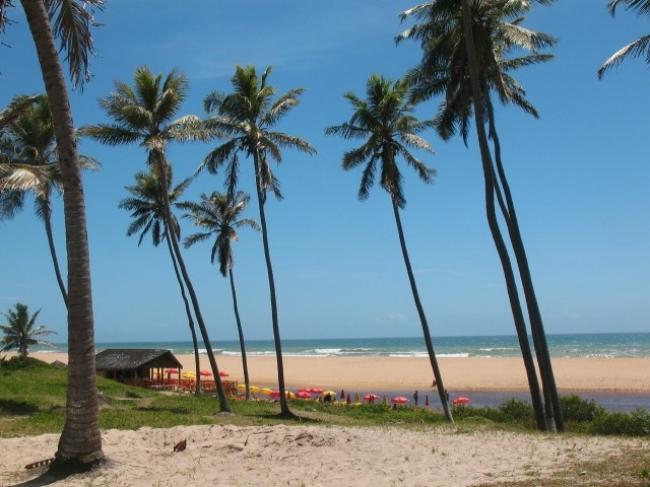 Verano en el Litoral Salvadoreño ☼ Imbassai / Praia do Forte / Sauipe ☼ Enero